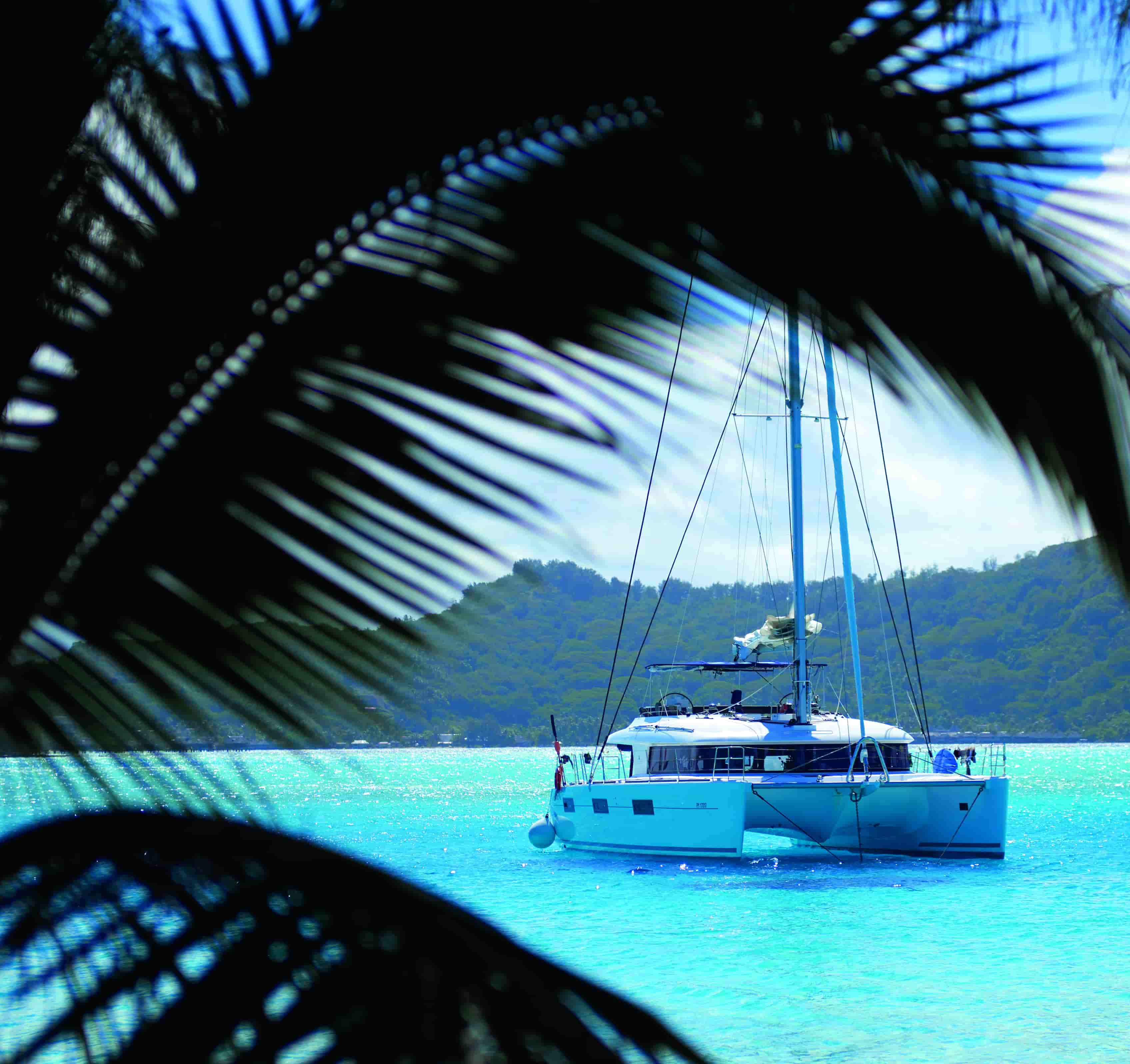 Crociera Tobago Cays Dream Premium